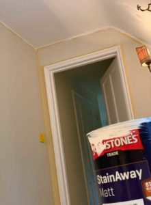 Johnstone's paint StainAway Review