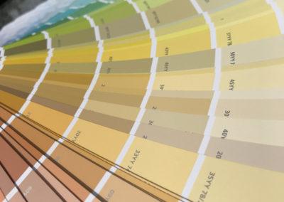 Dulux Trade Colour Sensor Review, client